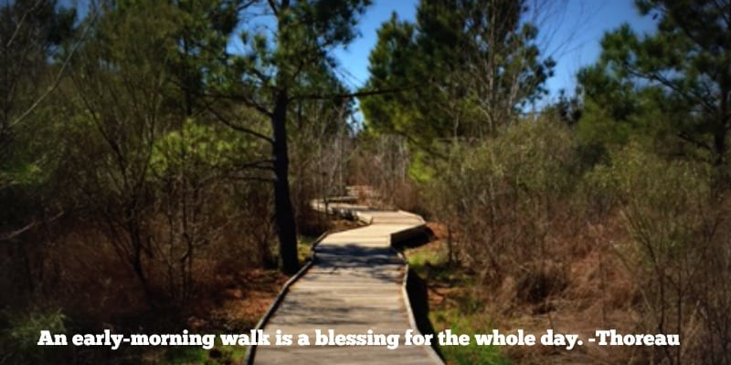 benefits of a walking routine